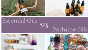 What Is The Difference Between Essential Oils And Fragrance Oils?