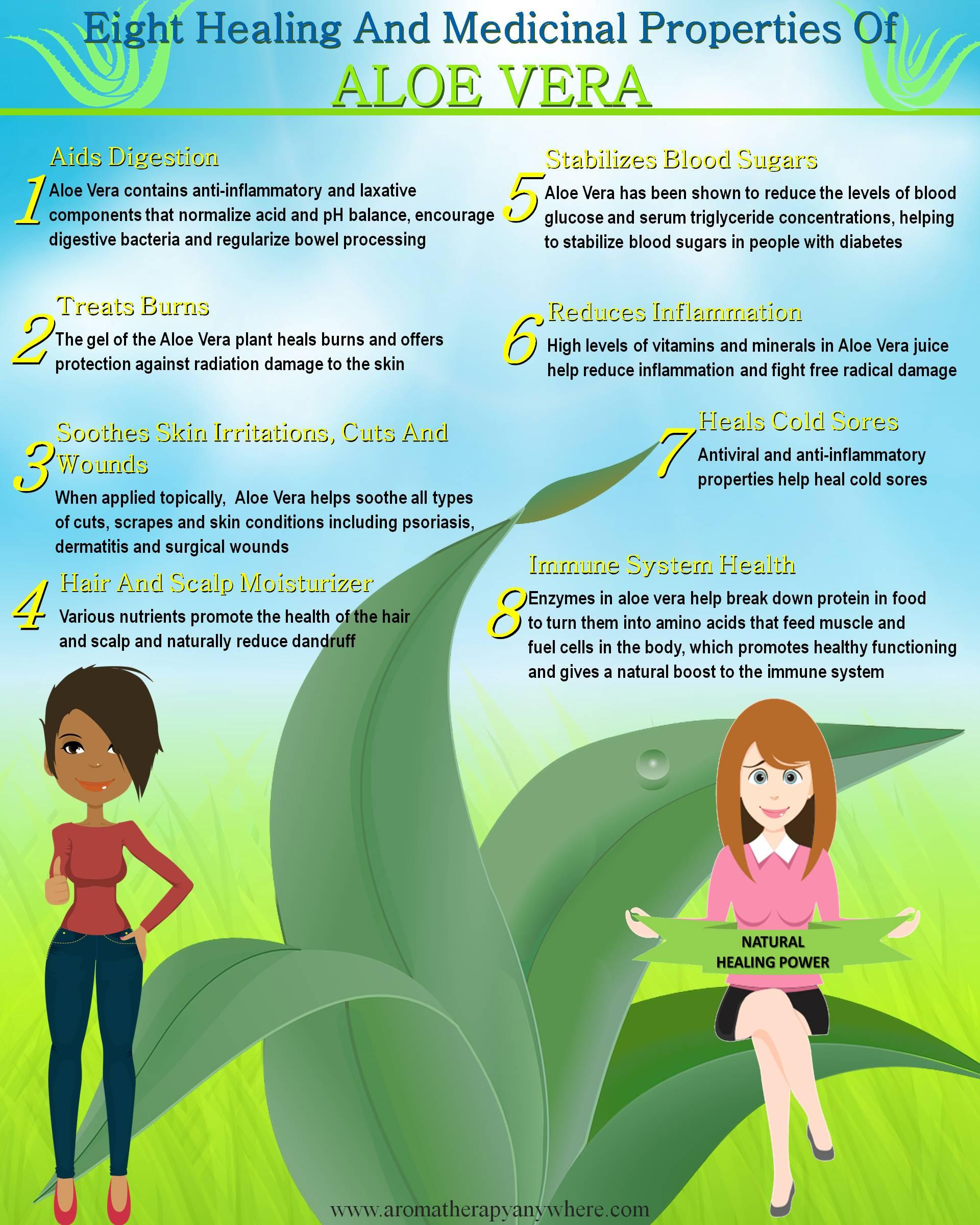Medicinal & healing properties of Aloe Vera