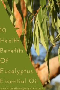 Eucalyptus Essential Oil Uses for Health