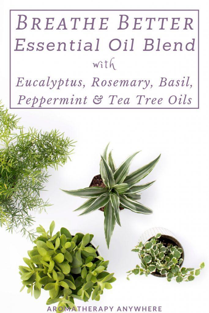 Breathe Better Essential Oil Blend with Eucalyptus, Rosemary, Basil, Peppermint & Tea Tree Oils