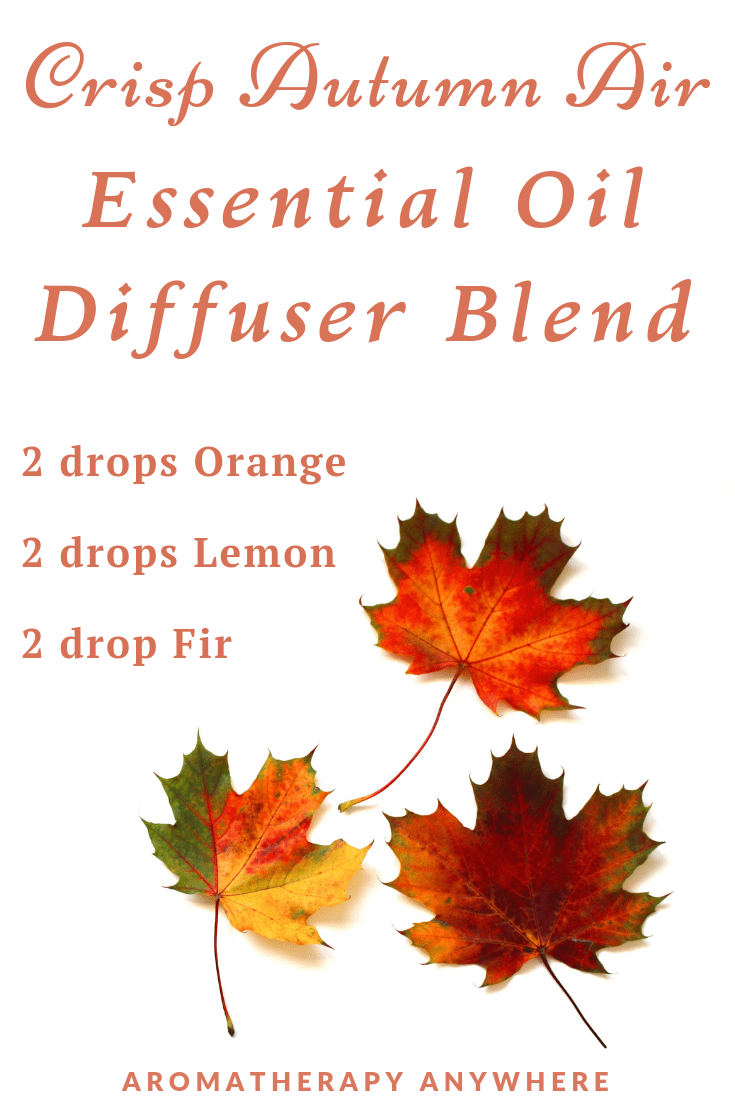 Crisp Autumn Air Essential Oil Diffuser Blend