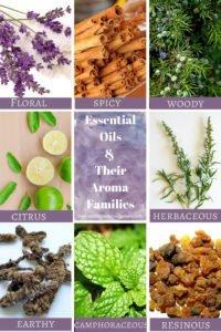 Essential oils aroma families