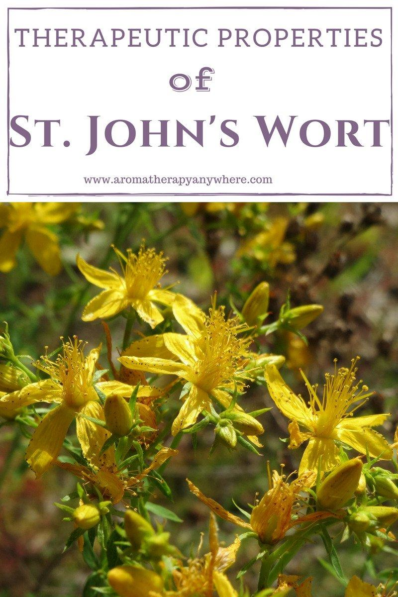 St. John's Wort Benefits and uses
