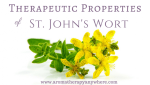 St. John's Wort Benefits