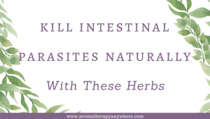 Kill Intestinal parasites naturally with these herbs