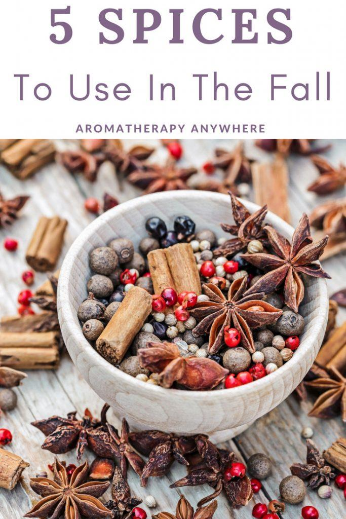 5 Spices to use in the fall