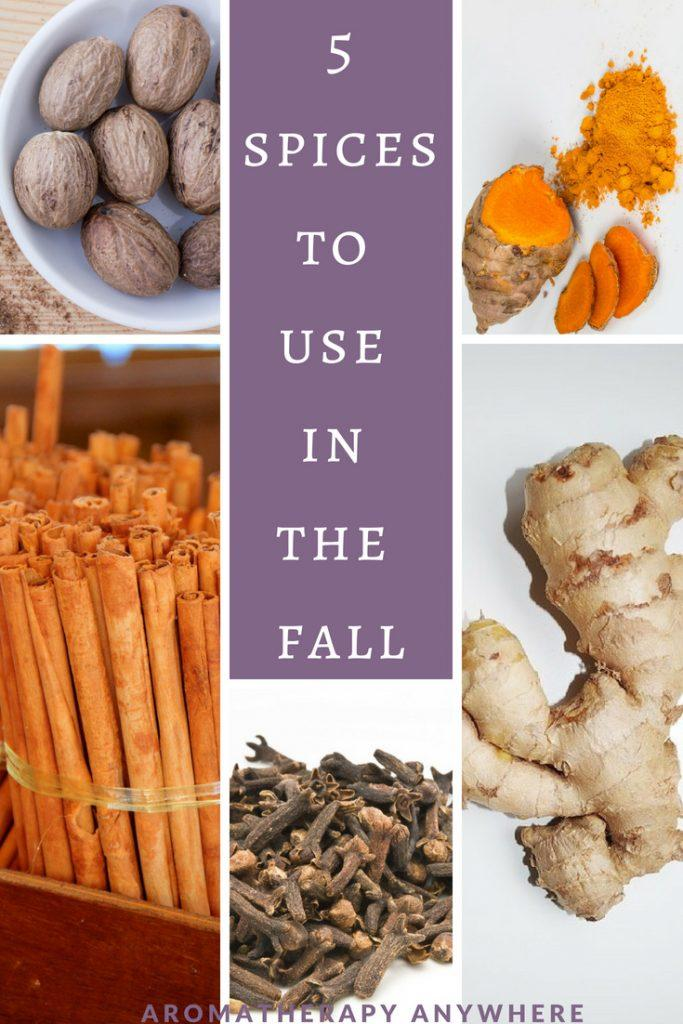 Best Spices to use In The Fall