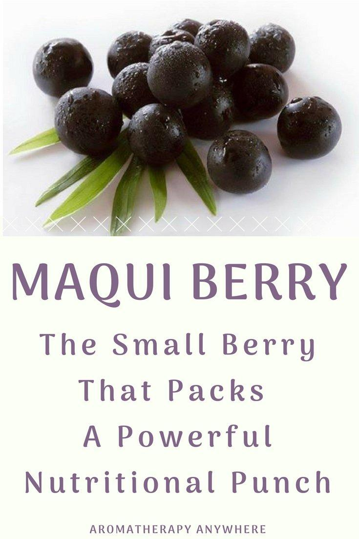 Maqui Berry-The Small Berry That Packs a Powerful Punch