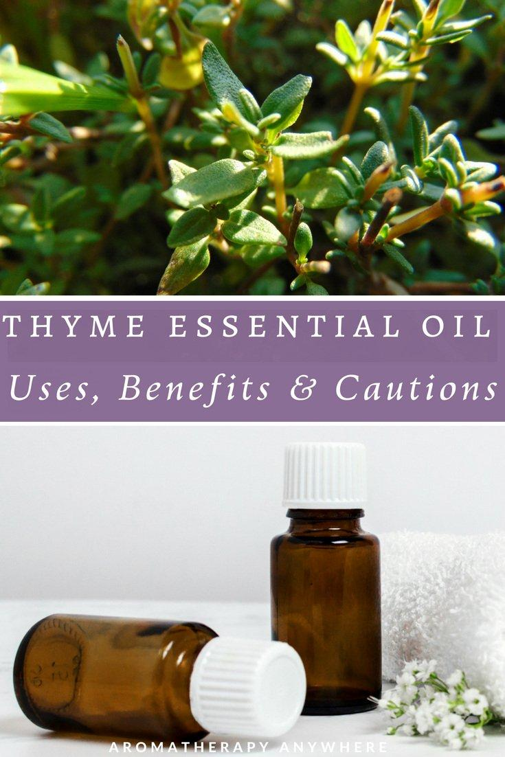 Thyme essential oil benefits, uses & cautions