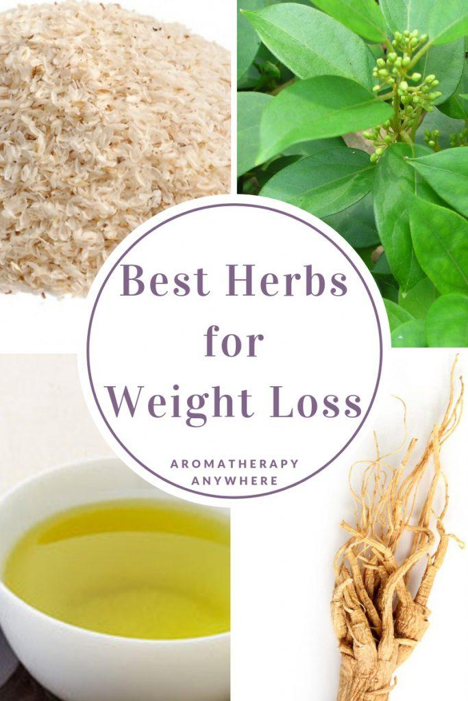 Best Herbs for Weight Loss