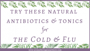 Try these natural antibiotics and tonics for the cold and flu