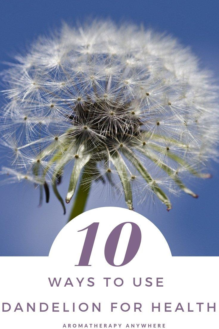 10 ways to use dandelion for health