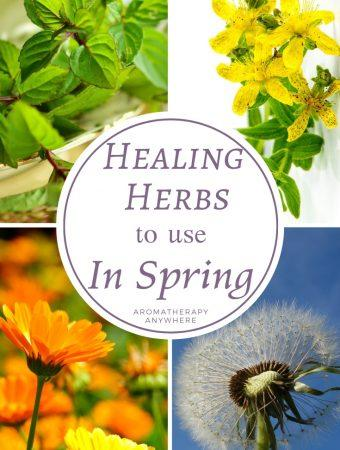 Healing Herbs to Use in Spring