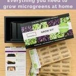 microgreens grow kit