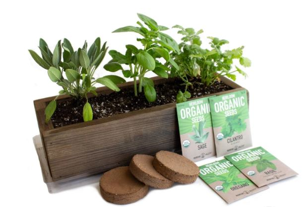 Indoor herb garden kit with planter and seed pods