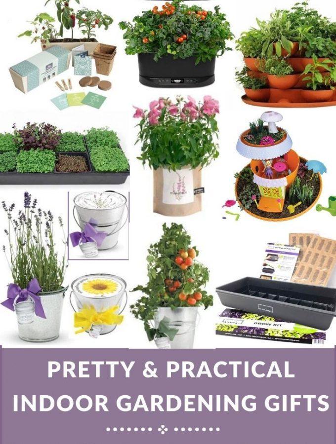 assorted gardening kits
